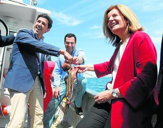 Los pescadores del puerto de Punta Umbría pueden volver a la pesca del boquerón