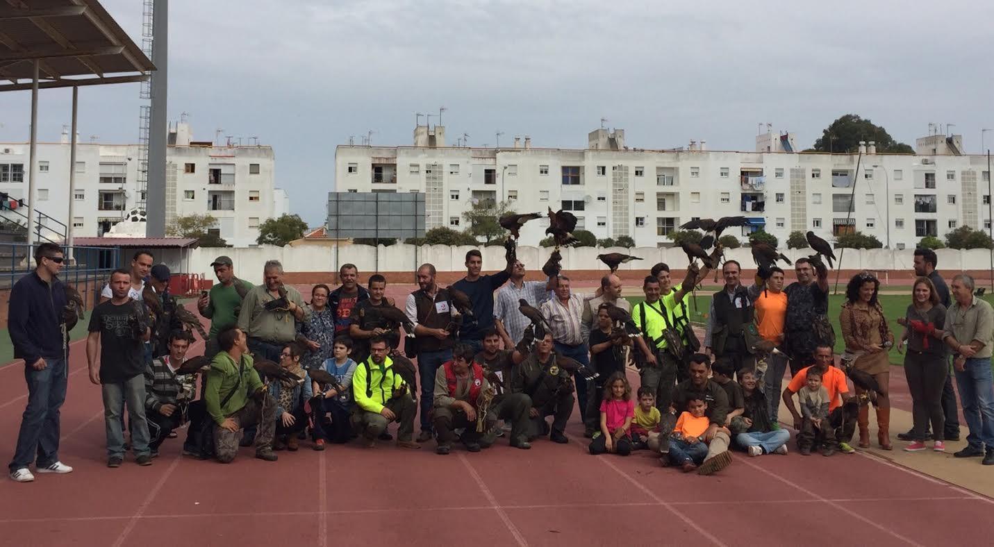9ª Edición del Encuentro Nacional de Cetrería en Isla Cristina