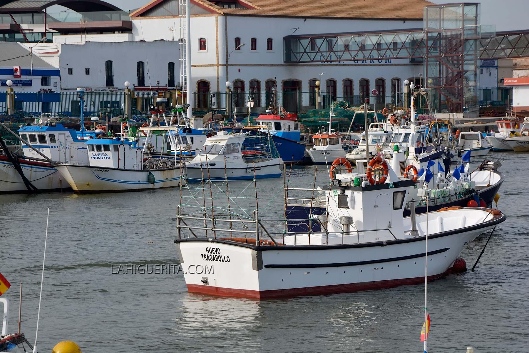 Más de mil profesionales del mar están llamados a votar en las próximas elecciones en las tres cofradías