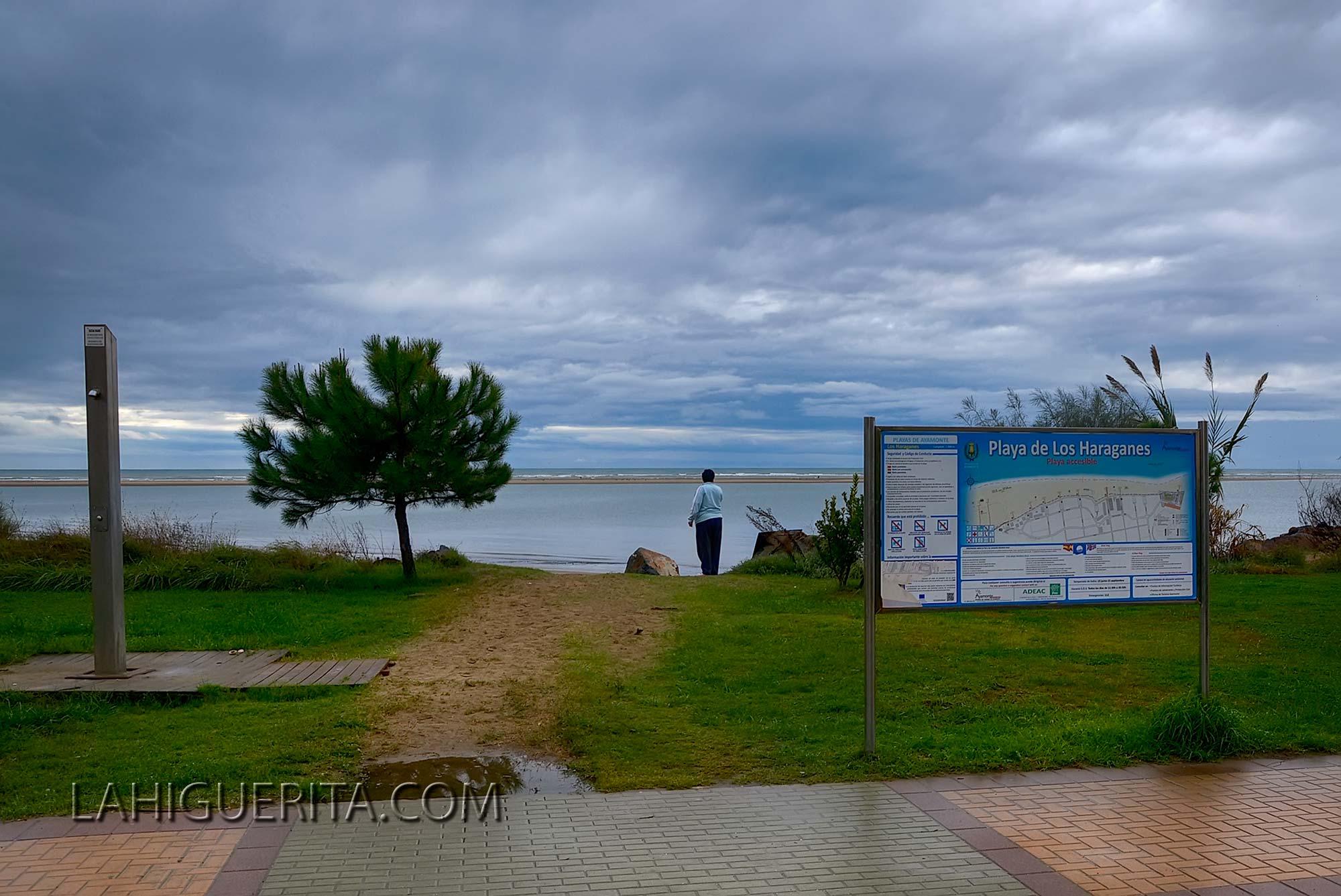 Punta del moral y canela _DSC4641
