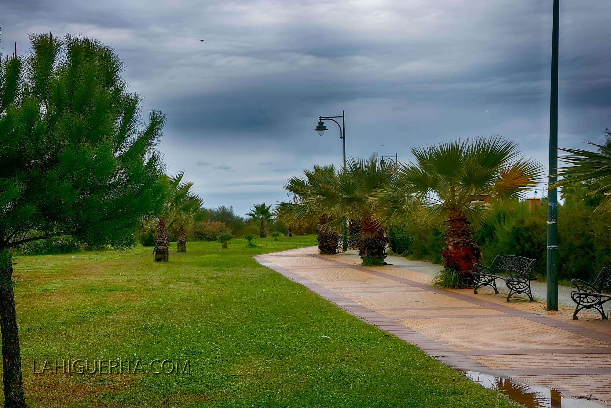 Punta del moral y canela _DSC4651
