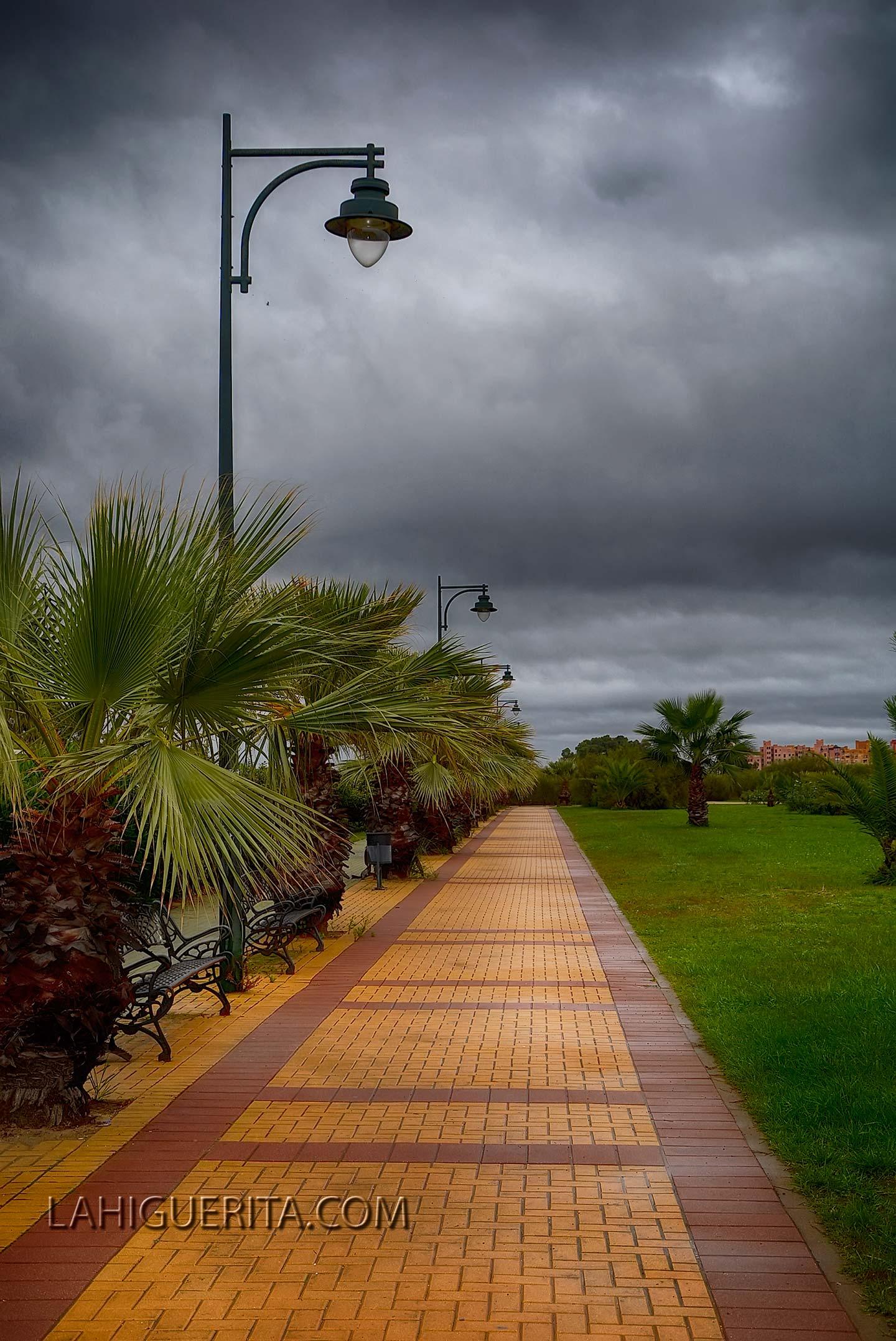 Punta del moral y canela _DSC4653