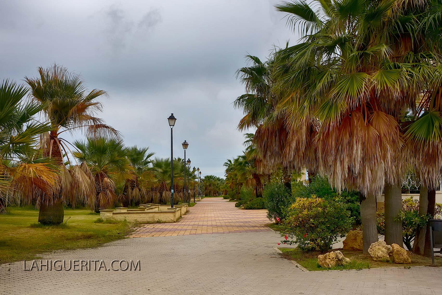 Punta del moral y canela _DSC4767