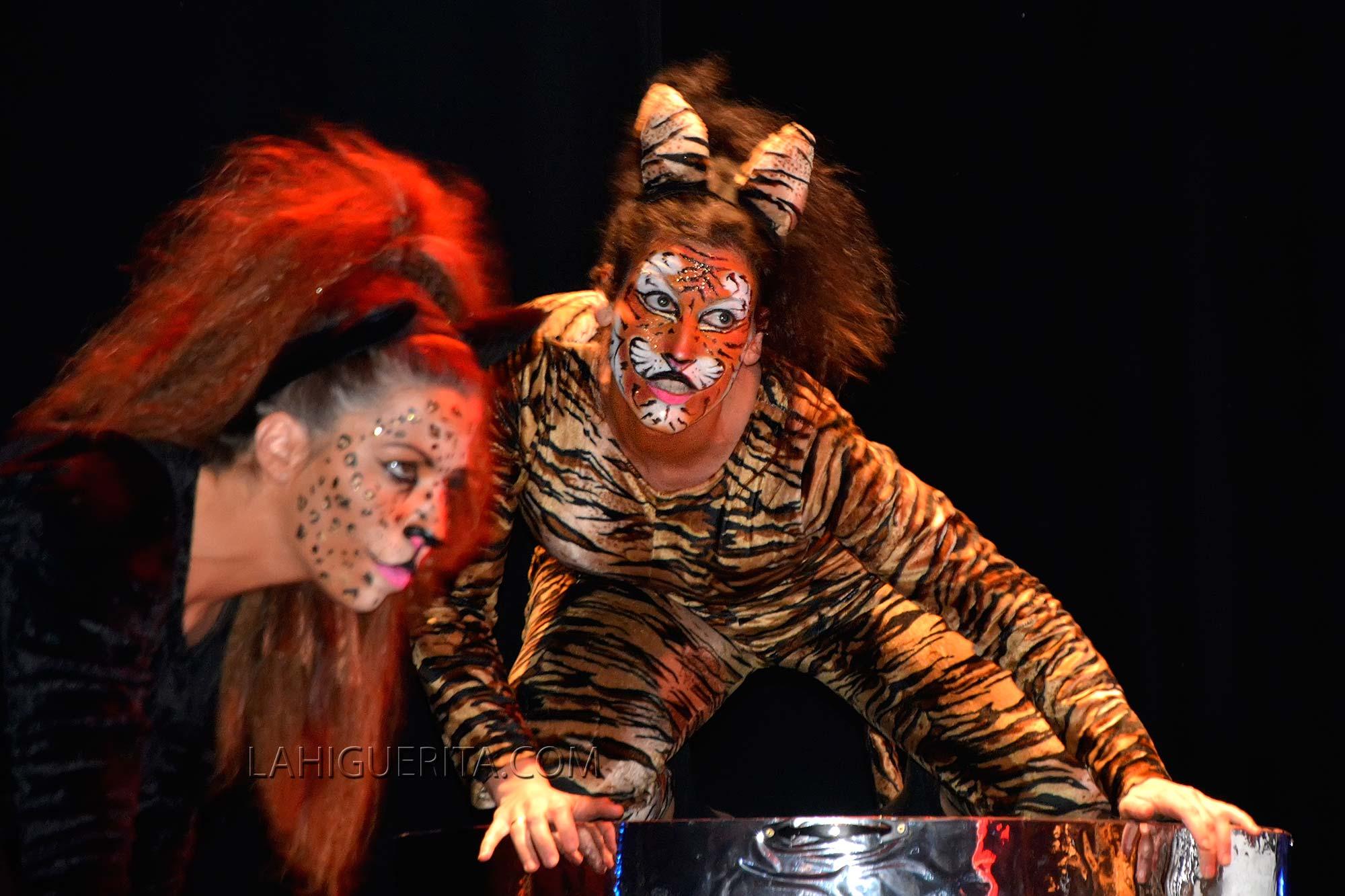 Show Coronacion juvenil carnaval isla cristina 2016 _DSC2632