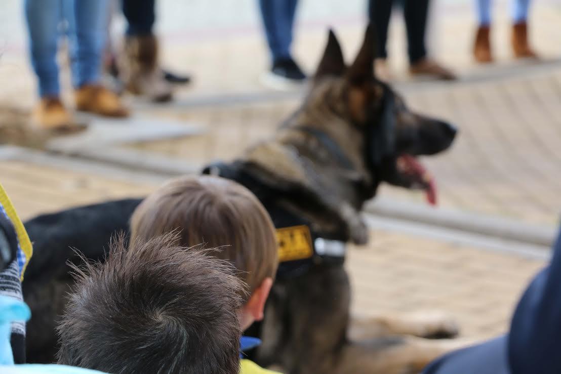 El europeo de Policías y Bomberos de Huelva se acerca a los más pequeños de la ciudad a través de perros k9