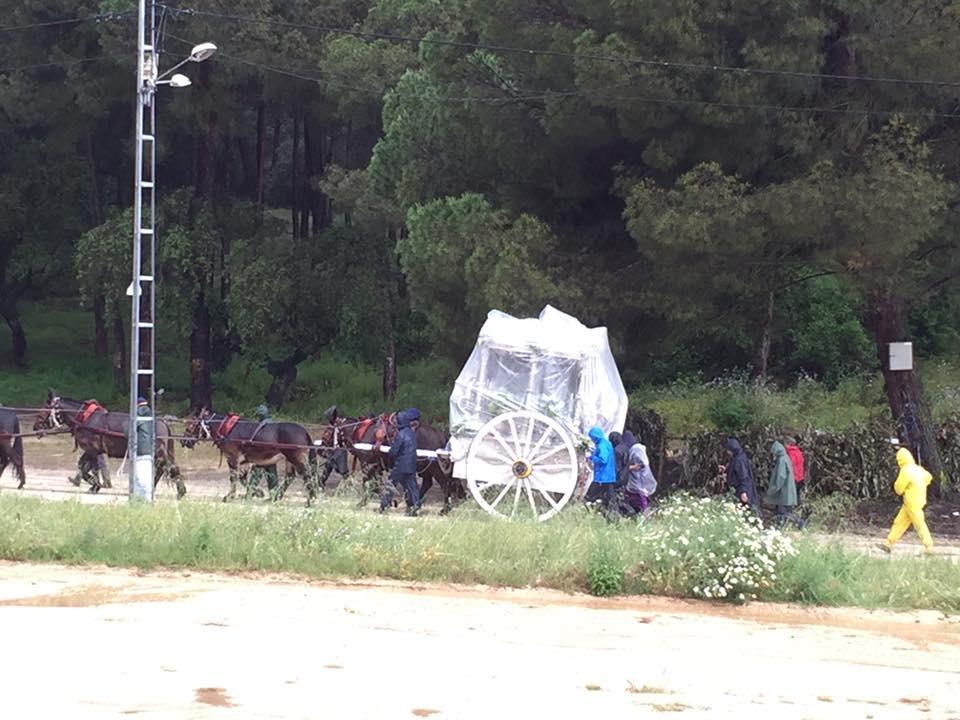 De Llera destaca el buen funcionamiento de los itinerarios alternativos de las hermandades que peregrinan al Rocío