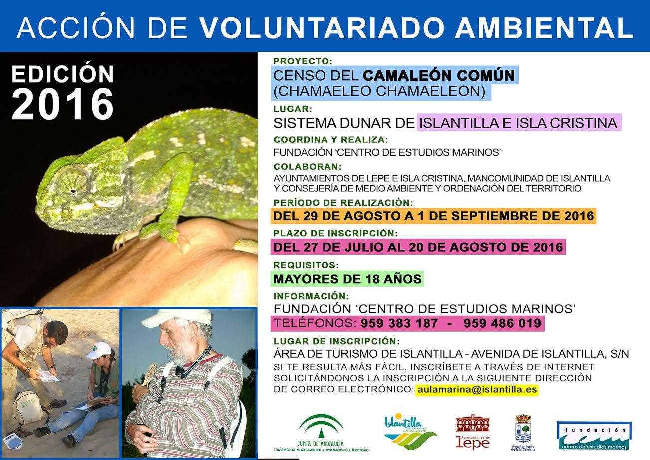 Censo del Camaleón Común en Islantilla