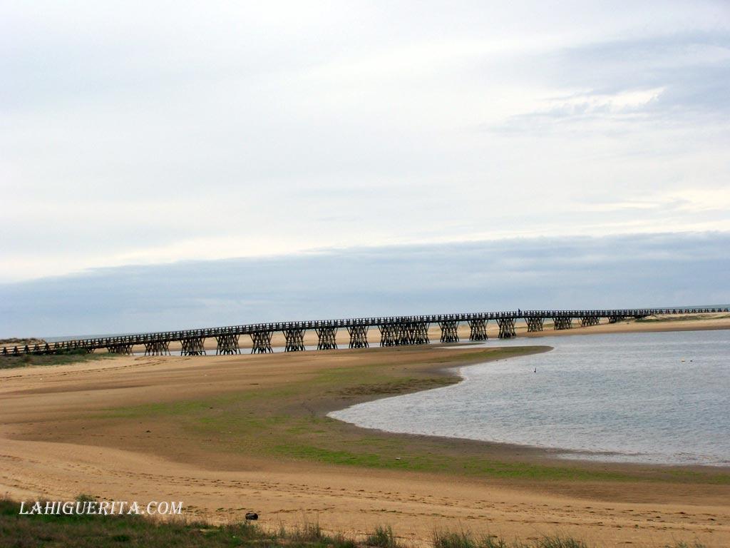 Un largo paseo por la naturaleza de las playas de Isla Cristina