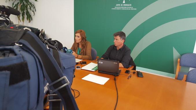 Seguimiento e identificación a un ejemplar de águila en Marismas de Isla Cristina