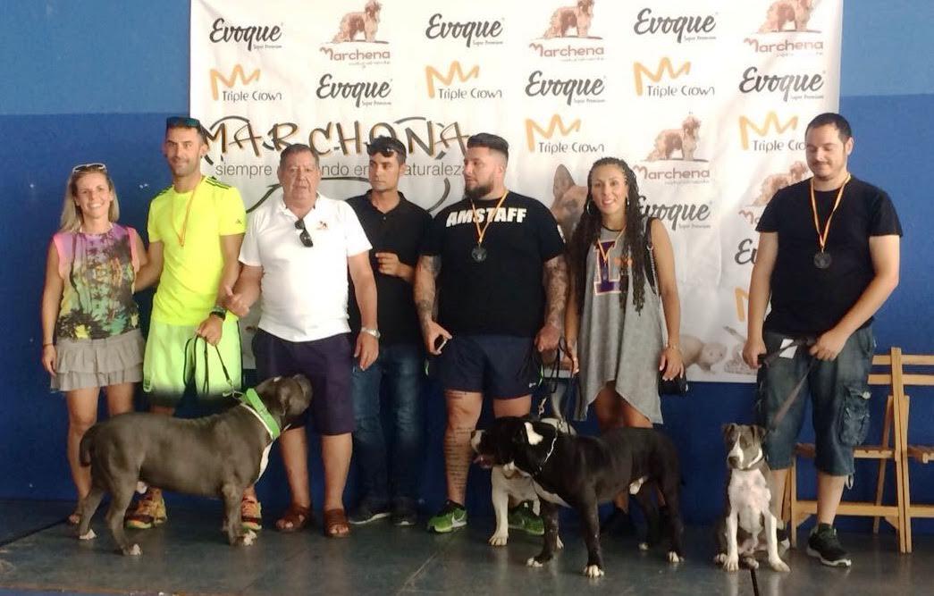Más de 50 perros en la primera Exposición y Adiestramiento canino de Isla Cristina