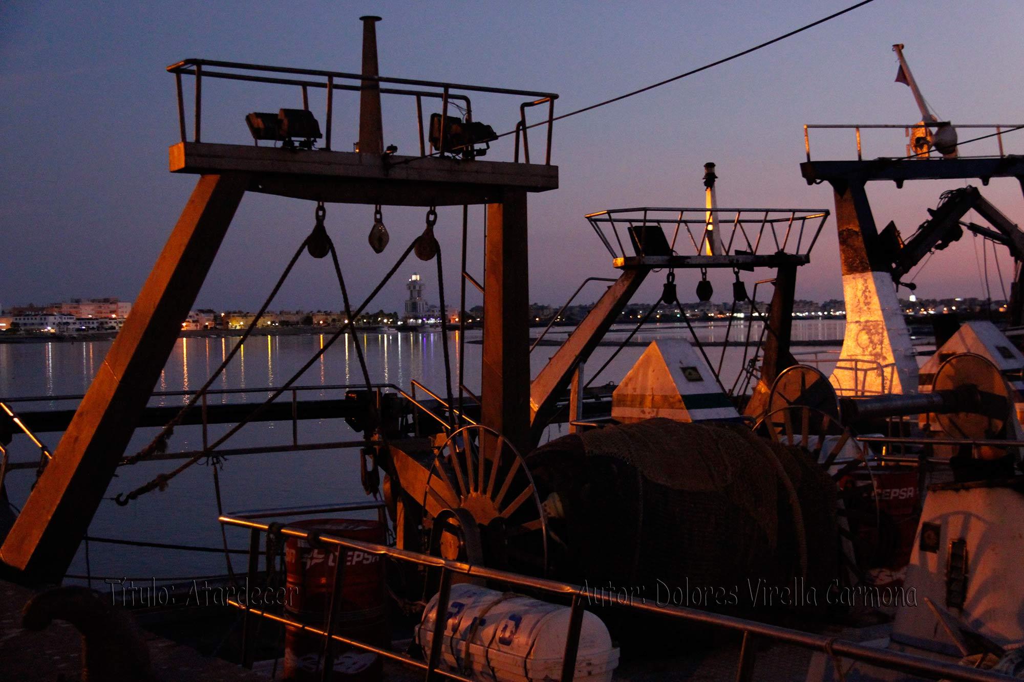 El Gobierno reabre la pesquería del jurel en el Golfo de Cádiz