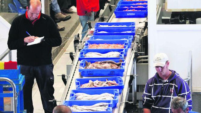 La lonja de Isla Cristina vuelve a sobresalir como el máximo referente de la pesca andaluza