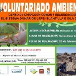 Abierto plazo de inscripción en Islantilla para Acción de Voluntariado Ambiental