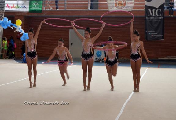 El club de gimnasia ritmica la Higuerita clasificadas para la final de la Provincia en juego Diputacion