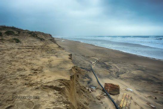 playa-central-DSC_2607
