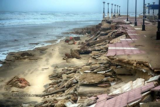 playa-central-DSC_2611