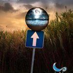 Sección Oficial a Concurso del XI Festival Internacional de Cine bajo la Luna - Islantilla Cinefórum