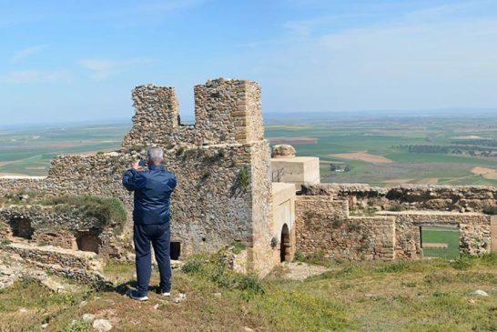 Castillo-de-Reina