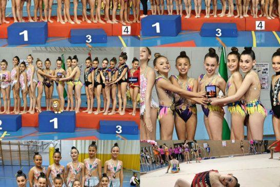 Ole por nuestras chicas del club de gimnasia ritmica la higuerita
