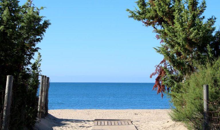 Organización de la Playa de Islantilla frente a la COVID19